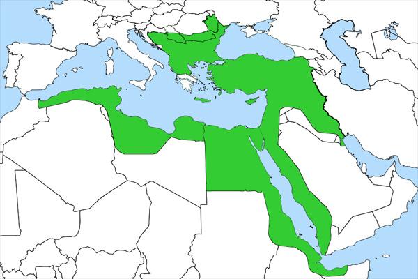 19. Yüzyıl Osmanlı Siyasi Gelişmeleri